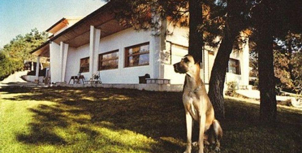 COMFORTABLY NUMB. Quand David Gilmour et ses compères séjournaient à Berre-les-Alpes, au studio Super Bear